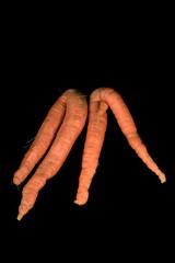 Karottenbeine, h.