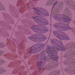 Seamless pattern of rowan leaves