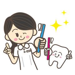 歯科衛生士と歯のキャラクター