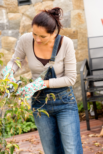 Woman pruning autumn tree clippers garden hobby