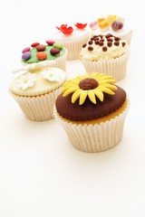 decorated cup cake selection on white