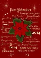 Weihnachtskarte mit Weihnachtsstern, 2014