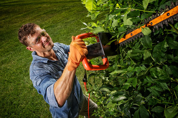 Man trimming bushes