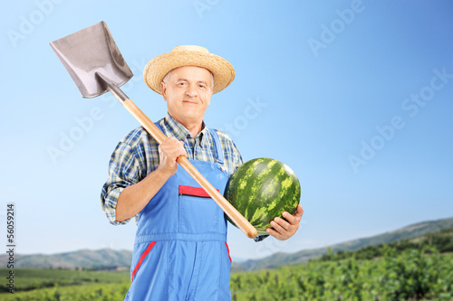 Smiling farmer holding a watermelon and shovel at field