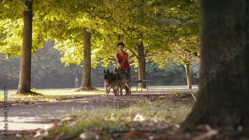 1of15 People, pets, dog sitter with alsatian dogs in park