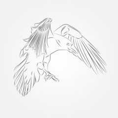 Sketch of Crow in Vector illustration