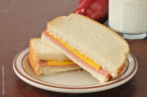 Baloney and cheese sandwich
