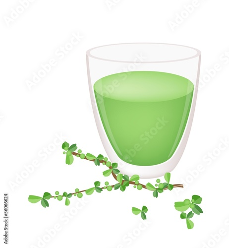 A Glass of Green Tea with Green Leaves