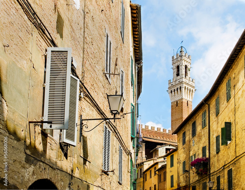 Street of Sinea with Mangia tower in background. Siena, Italy