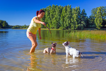 Woman throwing stick for two french bulldogs at the lake.
