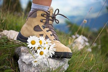 Chaussures de marche, marguerites