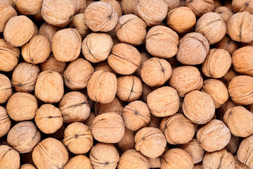 Whole walnuts as background