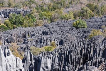 désert de pierres dans les Tsingys