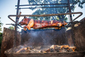 pig on the grill