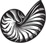 Sea shell. Black and white style