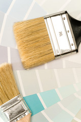 Paint brushes and shade card