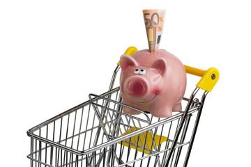 Einkaufswagen mit Sparschwein