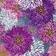 Seamless hand-drawn  aster pattern