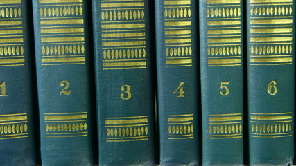 DOLLY: Row of Book Series