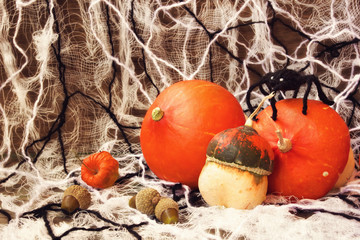 scary decorations for halloween: pumpkins, web and spiders
