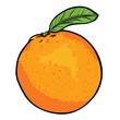 vector cartoon orange