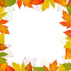 Fallvector leaf border