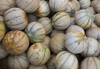 Close-up view of melons in market