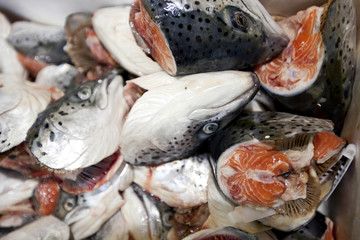 Close-up of chopped fishes in market