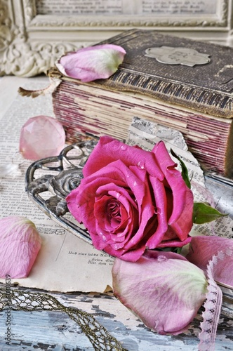 rose and antiques