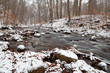mountain river in winter forest