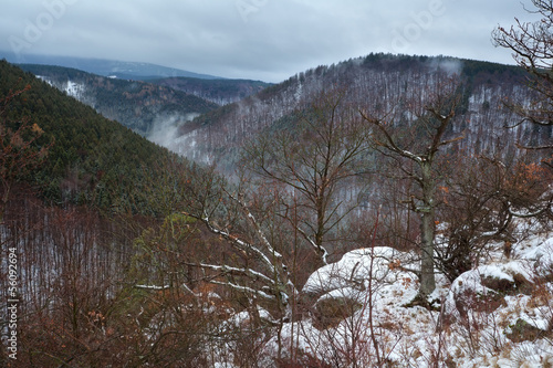 Harz mountains if winter fog