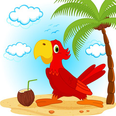 parrot on beach - vector illustration
