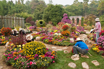Horticultural workers at work