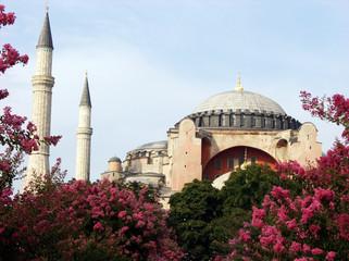Hagia Sophia mosque,Istanbul,Turkey