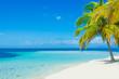 canvas print picture - Traum Insel in der Karibik
