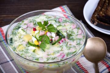 Vegetable soup ( okroshka )