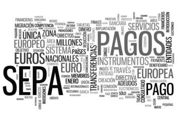 Zona Única de Pagos en Euros - SEPA