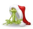 rana natalizia