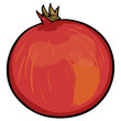 vector cartoon pomergranate