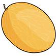 vector cartoon melon
