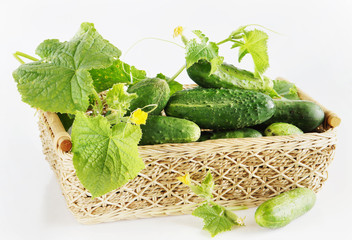 Fresh cucumbers in a basket against light background