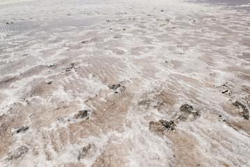 Kuyalnik salt beach