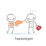 hepatologist cured patient liver