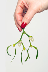 Womans hand holding mistletoe