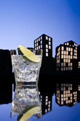 Metropolis Gin Tonic cocktail