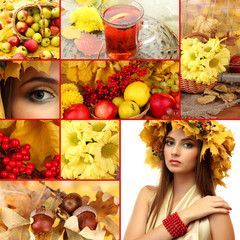 Collage of beautiful autumn