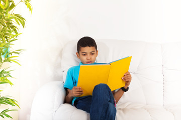 Busy reading smart boy