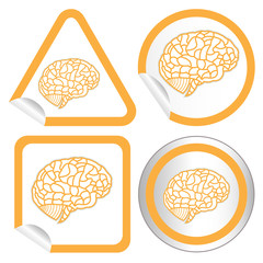 brain model on sticker icon web button