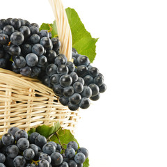 Basket with red grapes isolated on white