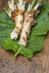 a fresh horseradish on a table